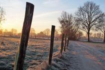 Weg am Niederrhein von Frank  Kimpfel