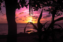 Sonnenuntergang - Seychellen by stephiii