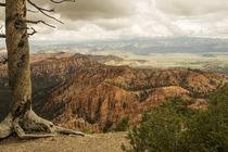 Faszination Bryce Canyon von Andrea Potratz