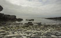 Schottlands Küsten - Natur pur auf Orkney by Andrea Potratz