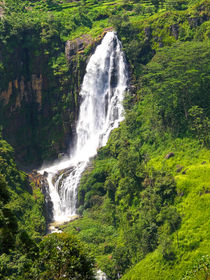 Highland Waterfall  by Sylvia Seibl
