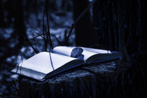 Mysterious Book at Night by maxal-tamor