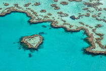 Heart Reef von Christine Büchler