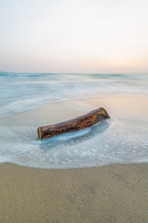 '~ Wood and Water #1 ~' by Henrik Spranz