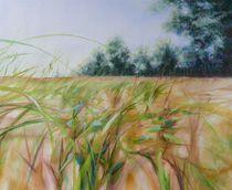 Sommerwind von Helen Lundquist