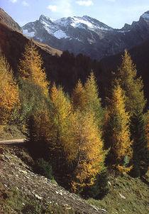Südtirol by Karlheinz Milde