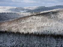 Naturpark Rothaargebirge by Karlheinz Milde