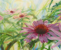 Sonnenhut by Helen Lundquist