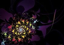 Aurora Light von Nismah Shargawi