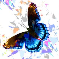 Butterfly 313 by David Dehner