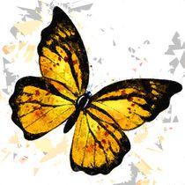 Butterfly 328 von David Dehner