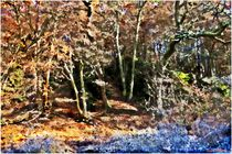 Landscape Views von Sandra  Vollmann