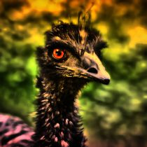 Fantasy Emu 5 by kattobello