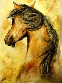 Back View Horse by Sandra  Vollmann