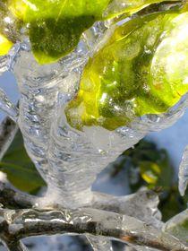 Grün im Eis von atelier-kristen