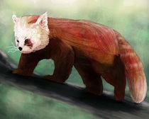 Red Panda von Ben Geiger