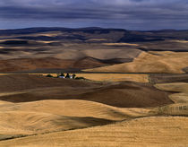 Farming in the Palouse von Jim Corwin
