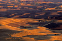 FarmLand Eastern Washington by Jim Corwin