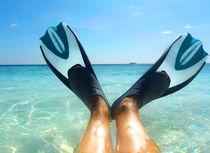 Snorkeldream von Sylvia Seibl