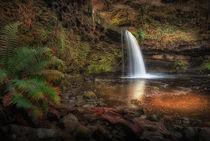 Lady Falls Sgwd Gwladus waterfall by Leighton Collins