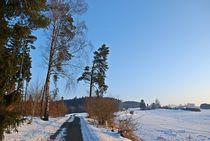 sunny winter morning... by loewenherz-artwork