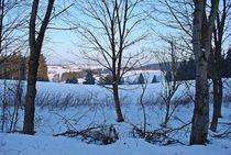 sonniger Wintermorgen... by loewenherz-artwork