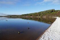 Loch Morlich by jim sloan