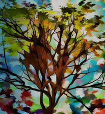 Cores de Outono 2 von Minocom Art Gallery