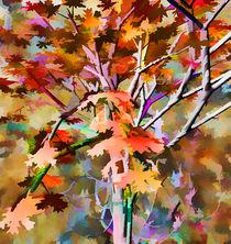 Cores de Outono 3 von Minocom Art Gallery