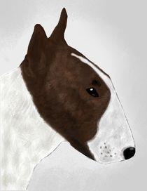 Bullterrier by sabiho