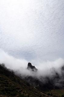 hilltop von Daniel Schröcker