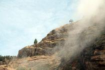 the ridge von daindilove