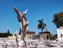 Necropolis Cristóbal Colón by Jens Schneider