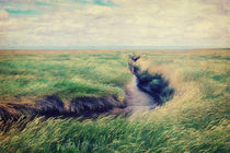 Westerhever  Vintage von AD DESIGN Photo + PhotoArt