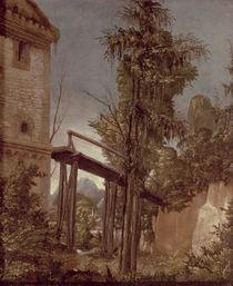Landscape with a Footbridge von Albrecht Altdorfer