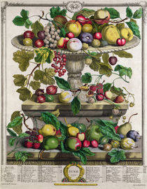 June, from 'Twelve Months of Fruits' von Pieter Casteels