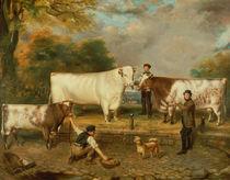 Cows with a herdsman von English School