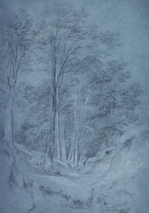 Study of ash and other trees von John Constable