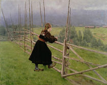 On the Plain by Karl Fredrick Nordstrom