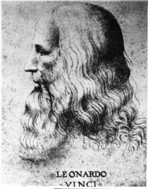 Portrait of Leonardo da Vinci by Italian School