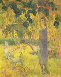 Man Picking Fruit from a Tree von Paul Gauguin