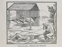 Curing the Sick, from 'Santo Domingo Past and Present' by Samuel Hazard von English School