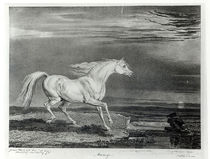 Marengo, engraved by the artist by James Ward