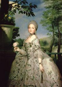 Portrait of Marie-Louise of Bourbon von Anton Raphael Mengs