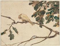 Canary on an Oak Tree Branch von Adolph Friedrich Erdmann von Menzel