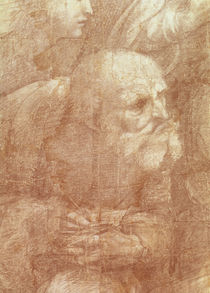 The School of Athens, detail of the cartoon depicting an elderly man by Raphael