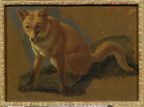 Study of a Fox by Jacques Laurent Agasse
