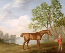 Pumpkin with a Stable-Lad, 1774 by George Stubbs