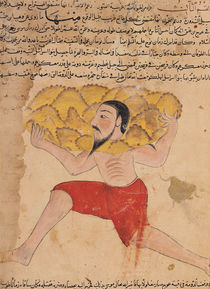 Ms E-7 fol.212a Giant Carrying Mountains by Islamic School
