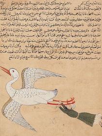 Ms E-7 fol.72a Merchant from Isfahan Flying by Islamic School